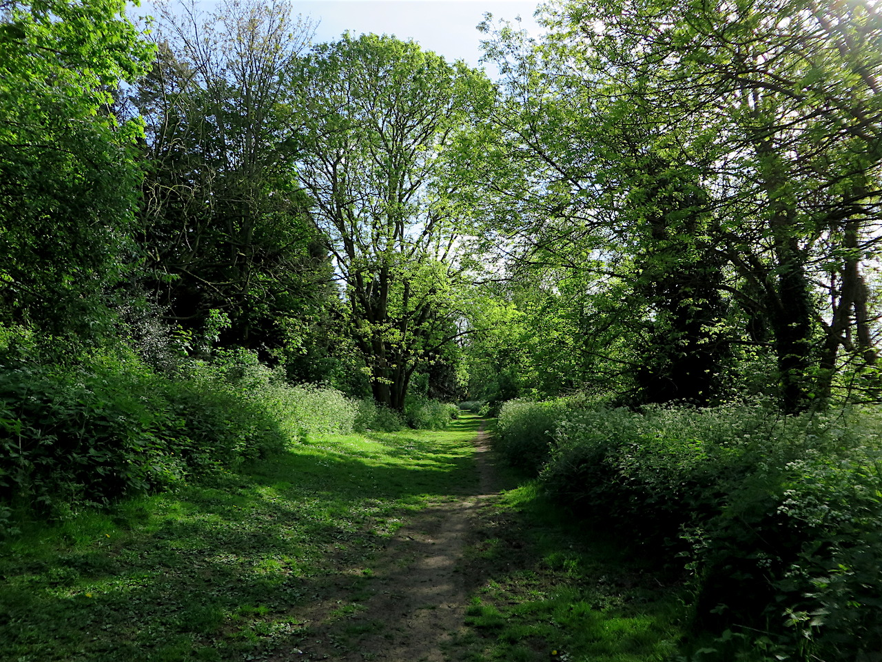Brenchley Gardens, Forest Hill, London SE23 on May 11, 2015, on the route of a railway line from Nunhead to Crystal Palace High Level that was opened by the London, Chatham and Dover Railway in 1865 to serve the Crystal Palace, which finally closed in 1954 (Photo: Andy Worthington).