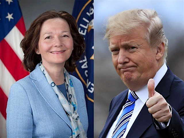 "Gina Haspel, the current Deputy Director of the CIA, and Donald Trump, who last week appointed her as the CIA's next Director, a nomination that should face hurdles in Congress because of her role overseeing a ""black site"" in Thailand, and her role in destroying videotapes of torture at the site."