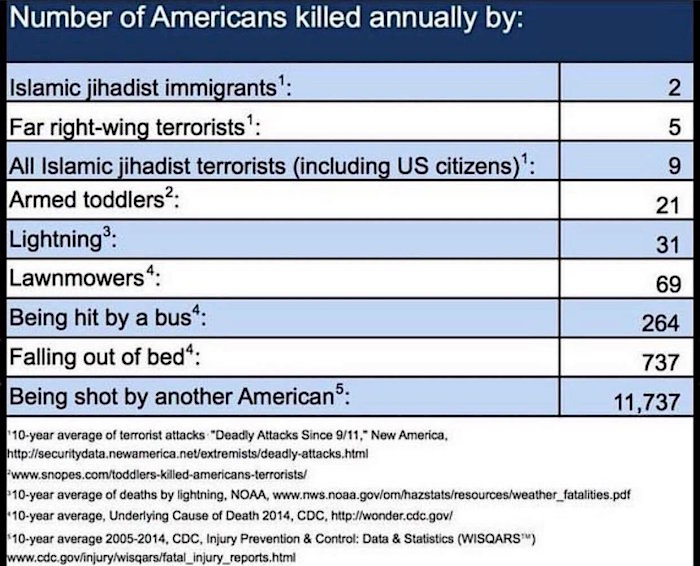 A list of the causes of death in the US, showing how few deaths are caused by terrorists.