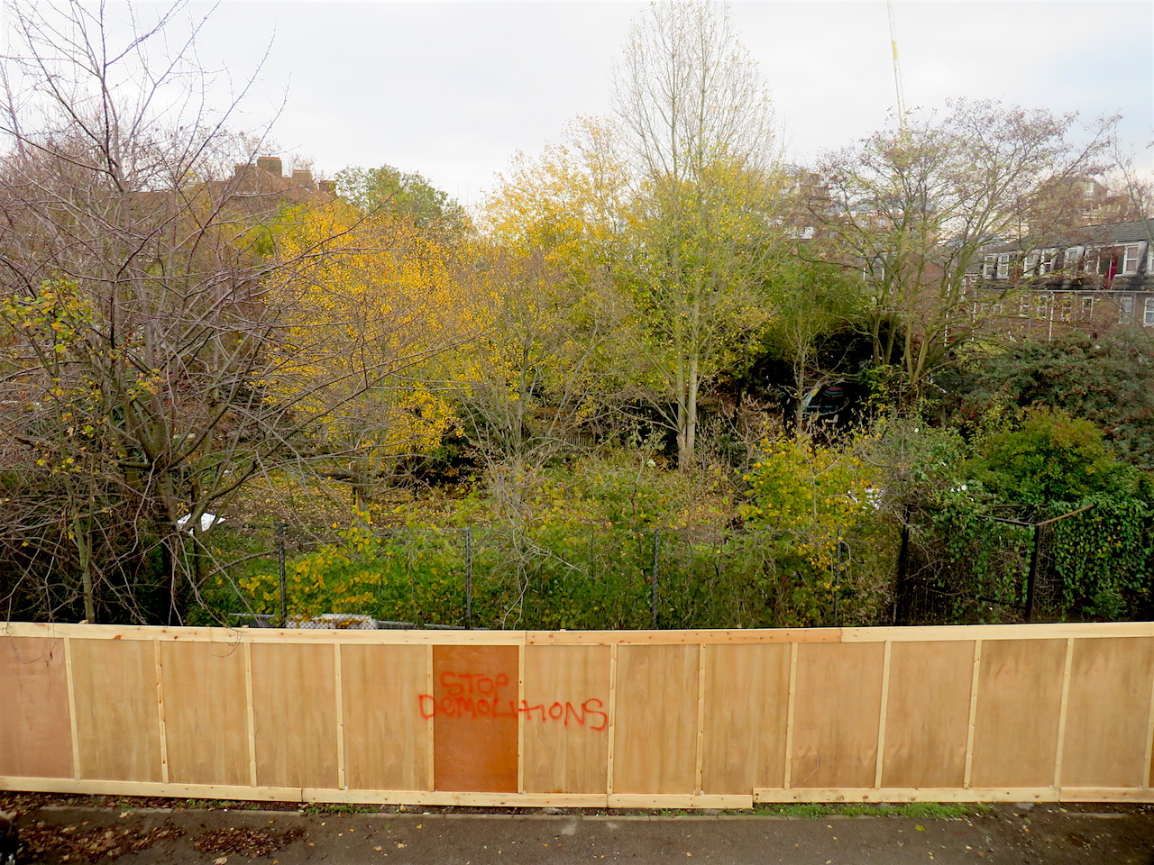 The Old Tidemill Wildlife Garden as viewed from the top balcony of Reginald House in Deptford on November 21, 2018 (Photo: Andy Worthington).