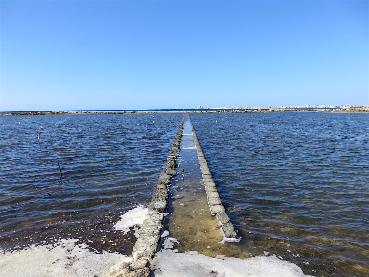 A view of the sea edge of the ancient salt pans at Trapani, in western Sicily (Photo: Andy Worthington).